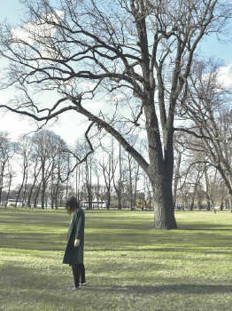 Осенний листопад, прогулка